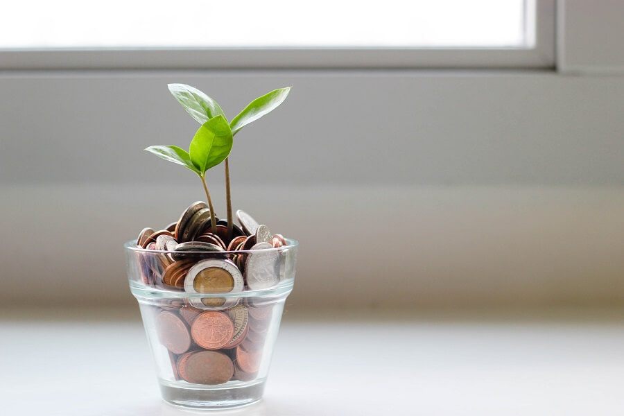 Glass jar with coins and plant growing out